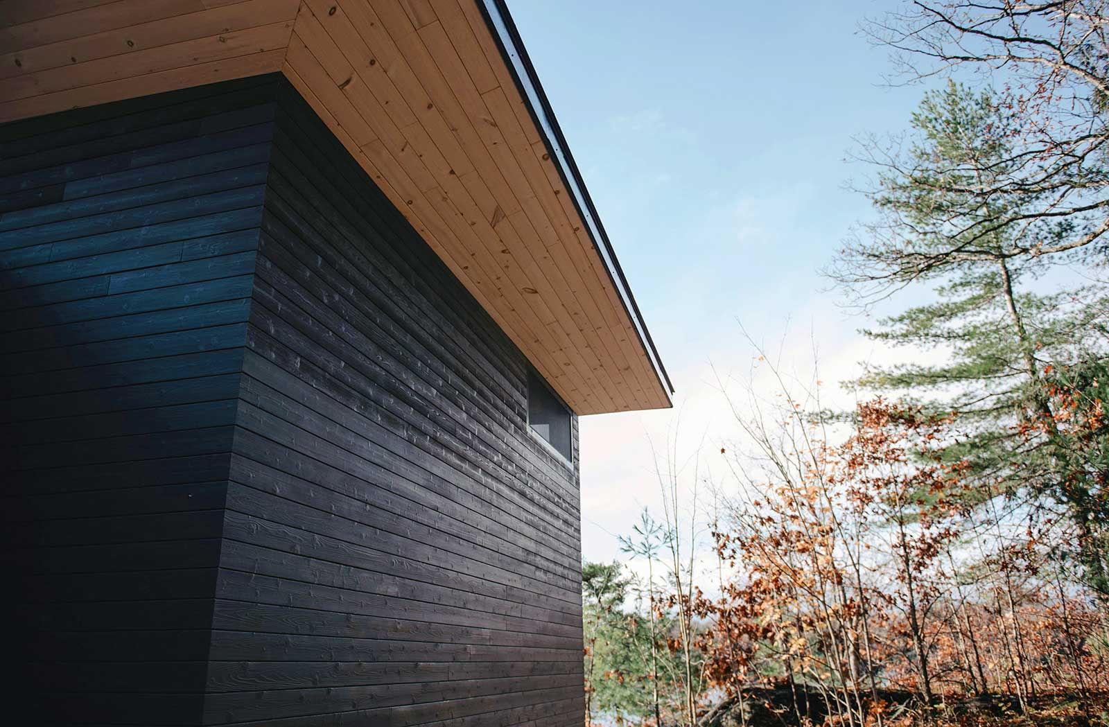 "Kindl Siding:  1"" X 6"" Tongue & Groove, Nickel Reveal, Double Char, Premium Western Red Cedar"